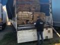 СБУ раскрыла очередную схему контрабанды леса