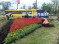 Киев украшают цветочными панно к финалу ЛЧ