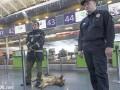 Арестован начальник таможенного поста аэропорта Киев