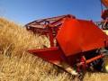 В Кабмине рассказали, какой урожай может собрать Украина в 2012 году