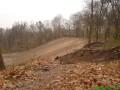 В Киеве ради лыжной трассы вырубили вековые дубы