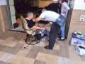 В Черноморске стреляли в депутата горсовета