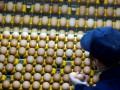 Украина перекрыла транзит яиц в Россию из Турции