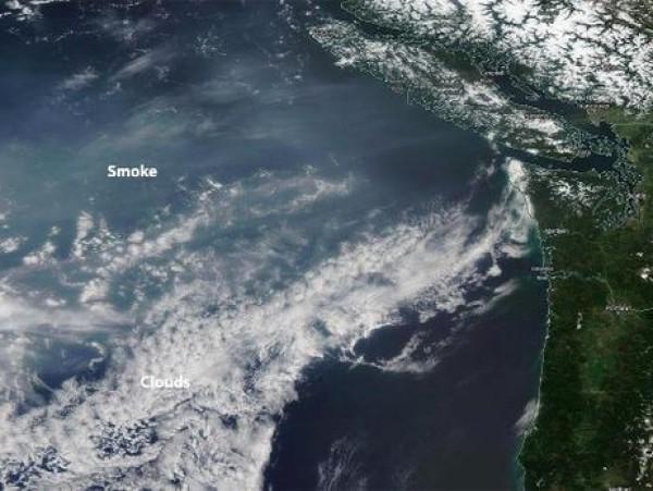 Дым достиг Вашингтона