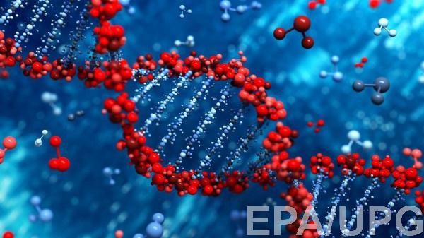 Генетики доказали что умные люди обречены на вымирание