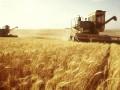 Порошенко подписал антирейдерский земельный закон
