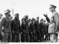 Герой Сталина, генерал Гитлера: история Власова глазами немцев