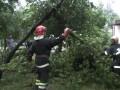 На Херсонщине ветер повалил 50 деревьев в селе, повреждена школа