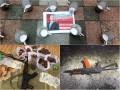 Итоги 4 июля: Операция Антиянтарь, покушение на Киву и железные кружки под Радой