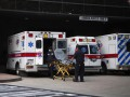 В США выявили новый штамм коронавируса