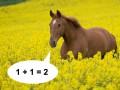Отлично посчитано, конь! Новый хит покоряет интернет (ФОТО)