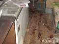 В Кировоградской области от взрывчатки пострадал мужчина