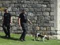 В Нью-Йорке в жилом доме обнаружили тела четырех человек