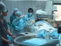 Феофания с начала сентября принимает больных коронавирусом