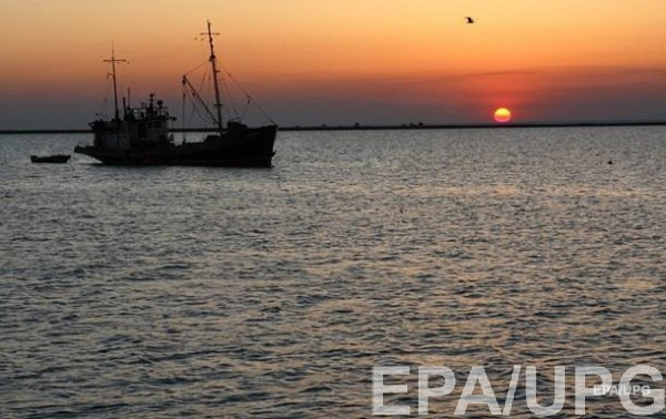 На побережье Азовского моря шторм вынес тонны водорослей: потемнела вода