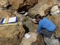 В Альпах нашли ящик с мукой, которой 4 тысячи лет