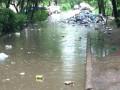 Во Львове мусор разнесло дождем по улицам