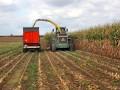 В Минагрополитики ожидают рекордный объем экспорта зерна