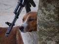 На Донбассе сепаратисты использовали лазерное оружие
