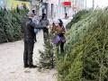 Стало известно, сколько киевляне заплатят за новогоднюю елку