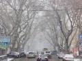 Из-за снегопада в Одессе рекордные пробки - 10 баллов