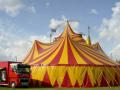 В РФ три десятка животных сгорели при пожаре в цирке
