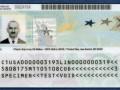 В Украине началась регистрация на Green Card