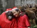 Животные недели: мохнатые пограничники, друзья-Санта Клаусы и медведица Диана