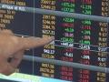 На российском рынке акций 23 января упали фондовые индексы