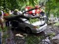 На Закарпатье ураган валил деревья и топил деревни