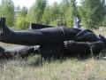 Памятник Ленину продали с аукциона на Черниговщине