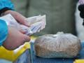 Попытки подкупа избирателей: Крищенко расстазал статистику по Киеву
