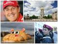 Позитив дня: Шумахер, амазонки Нацгвардии и огромный бегемот на Темзе