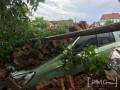 В Мукачево за ратушей на автомобили обрушилась стена