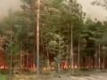 Под Ровно горит природный заповедник