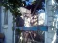 Боевики обстреляли жилой район Новолуганского