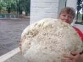 В Киевской области нашли гриб-гигант
