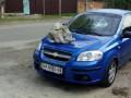 В Киеве на автомобиль бросили огромный камень