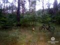 В Харьковской области загадочно погиб 23-летний парень