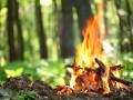Украинцев предупредили о чрезвычайном уровне пожарной опасности