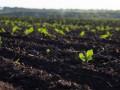 Директор ГУ Госгрунтохрана рассказал о создании единой базы состояния почв