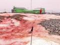 Снег вокруг украинской станции в Антарктиде стал кроваво-красным