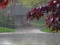Погода в Украине: +26, дожди и грозы