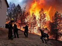 Число жертв лесных пожаров в Калифорнии возросло до 58