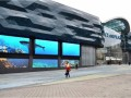 Акулу в ТЦ Океан Плаза могут усыпить (ВИДЕО)