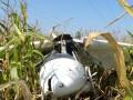 В Черниговской области упал самолет, есть жертвы