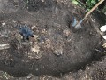 В Одесской области нашли мертвой женщину, уехавшую на свидание с интернет-знакомым