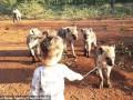 Двухлетняя девочка подружилась с гиенами