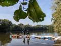 В Германии осушат озеро для поиска убитой женщины