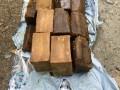 В столичном Гидропарке нашли тротиловые шашки, замаскированные под хозяйственное мыло